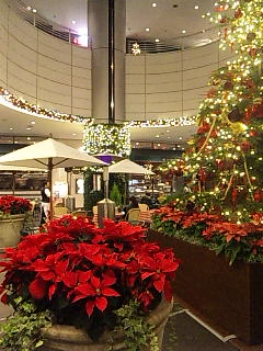 ドゥ・マゴのクリスマス