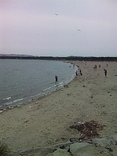 海の公園@金沢八景